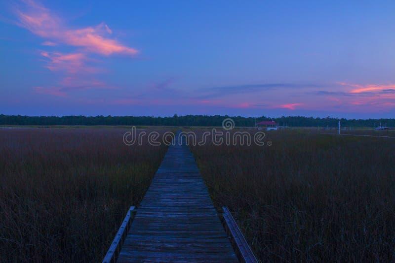 Το ηλιοβασίλεμα της νότιας Καρολίνας στον ποταμό της Ashley στοκ εικόνες