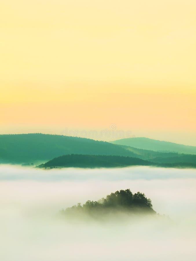 Το θαυμάσιο fogy τοπίο, αναπηδά την μπλε ρόδινη misty ανατολή σε μια όμορφη κοιλάδα του πάρκου της Σαξωνίας Ελβετία στοκ φωτογραφία με δικαίωμα ελεύθερης χρήσης