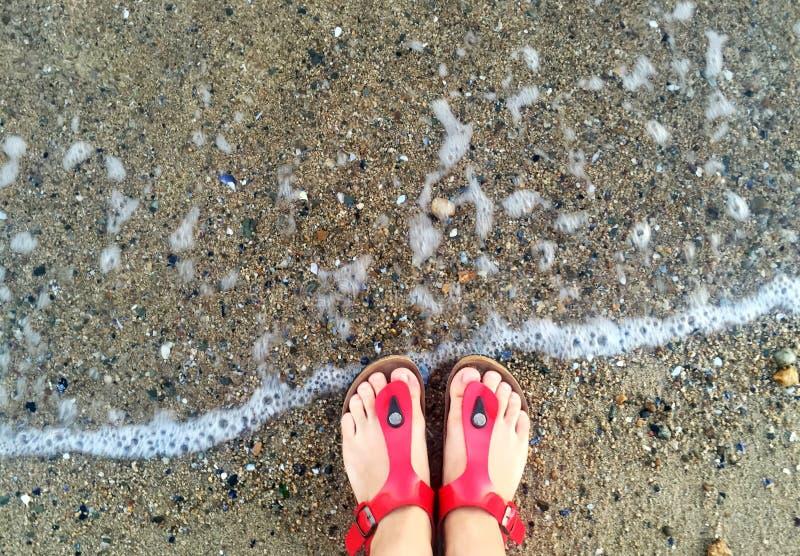Το θηλυκό πληρώνει σε μια παντόφλα στην παραλία στοκ εικόνα