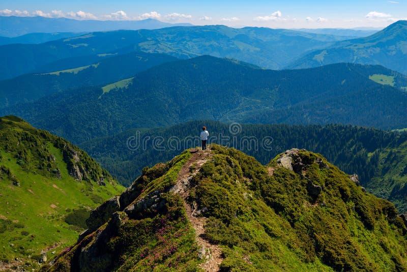 Το θηλυκό τυχοδιωκτών στέκεται στην πράσινη κορυφογραμμή βουνών στοκ εικόνα