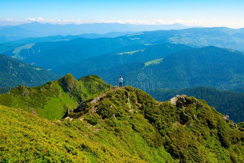 Το θηλυκό τυχοδιωκτών στέκεται στην πράσινη κορυφογραμμή βουνών στοκ εικόνες με δικαίωμα ελεύθερης χρήσης