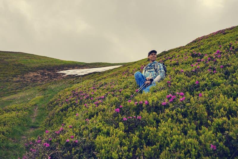 Το θηλυκό τυχοδιωκτών χαλαρώνει στην πράσινη βουνοπλαγιά στοκ εικόνα