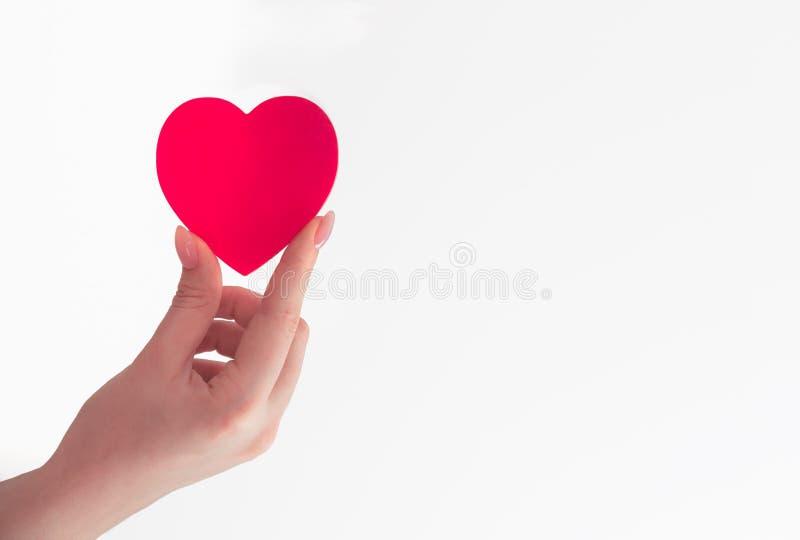 Καρδιά υπό εξέταση στοκ φωτογραφίες με δικαίωμα ελεύθερης χρήσης