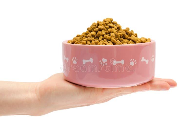 Το θηλυκό χέρι παίρνει ή δίνει τα τρόφιμα κατοικίδιων ζώων στοκ εικόνα