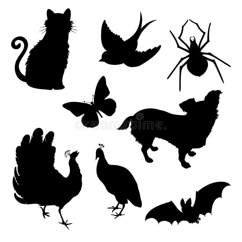 Το διανυσματικό σύνολο σκιαγραφεί τη γάτα, πουλί, πεταλούδα αραχνών, σκυλί peacock, ρόπαλο ελεύθερη απεικόνιση δικαιώματος