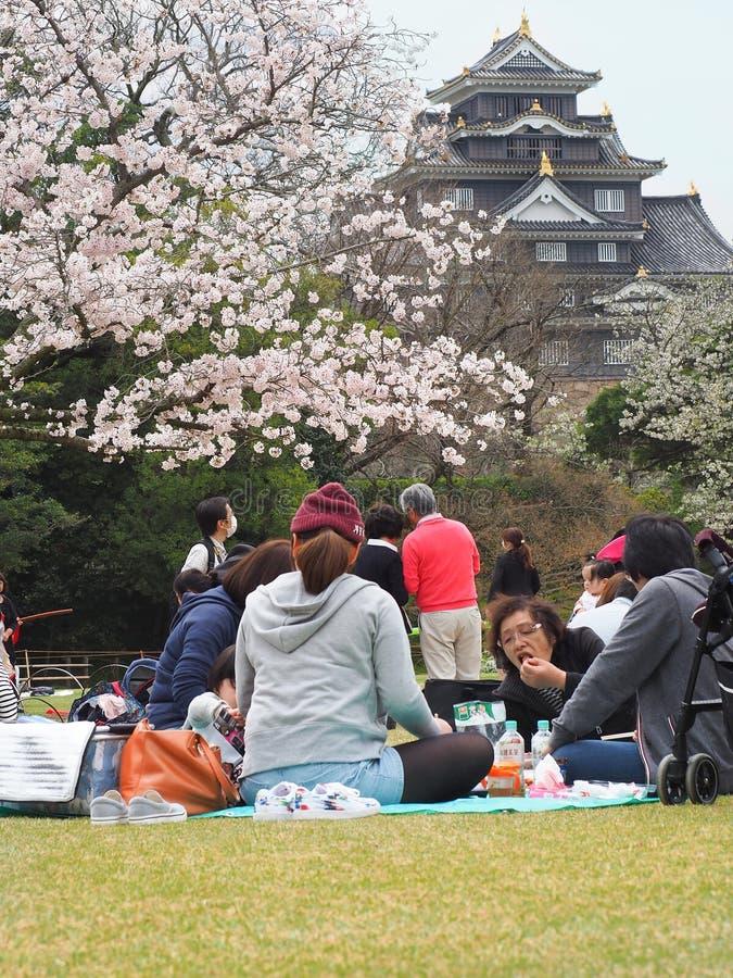 Το ιαπωνικό κεράσι απόλαυσης ανθίζει φεστιβάλ στο πάρκο στοκ εικόνες