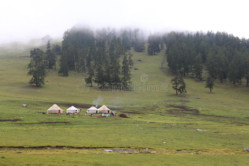 Το λιβάδι με τα yurts στοκ φωτογραφία