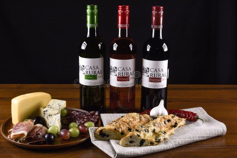 Το ισπανικό κρασί, σταφύλια, μπλε τυρί, τεμάχισε το prosciutto και το σαλάμι και το γαλλικό baguette στοκ φωτογραφία με δικαίωμα ελεύθερης χρήσης