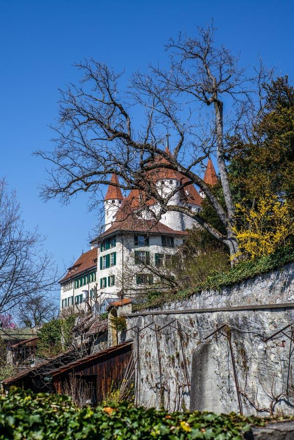 Το κάστρο Thun στην αρχή της άνοιξη στα ξημερώματα - 1 στοκ φωτογραφία