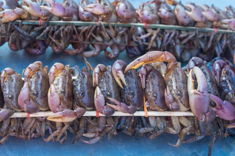 Το καβούρι, μαύρο καβούρι, γιγαντιαίο crabScylla λάσπης για την πώληση στοκ φωτογραφίες