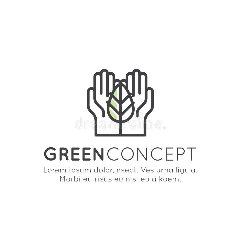Το καθορισμένο διακριτικό λογότυπων που ανακυκλώνει την οικολογική έννοια, φυτεύει ένα δέντρο διανυσματική απεικόνιση