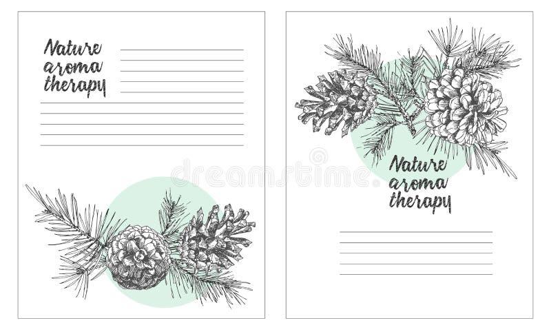 Το καθορισμένο πρότυπο καρτών με το ρεαλιστικό βοτανικό σκίτσο μελανιού σχεδίων του δέντρου έλατου διακλαδίζεται με τον κώνο πεύκ ελεύθερη απεικόνιση δικαιώματος