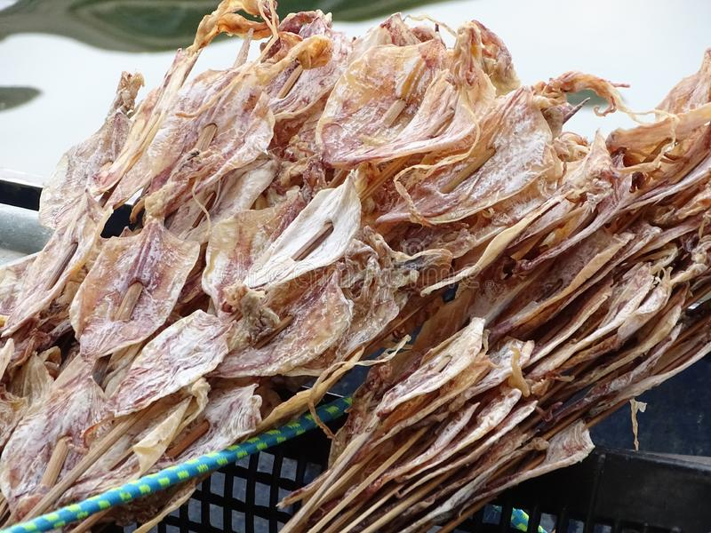 Το καλαμάρι που είναι ξηρό, προετοιμασμένος στο ξύλο στοκ εικόνες