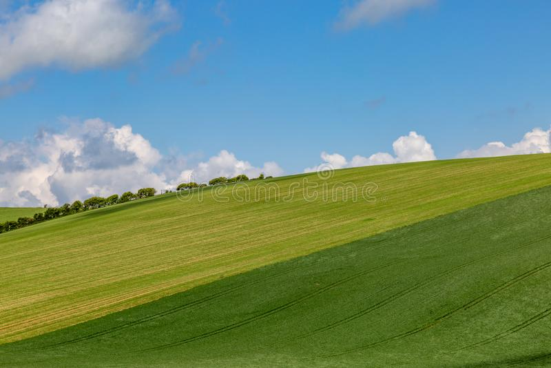 Το καλλιεργήσιμο έδαφος στο νότο κατεβάζει στο Σάσσεξ στοκ εικόνες