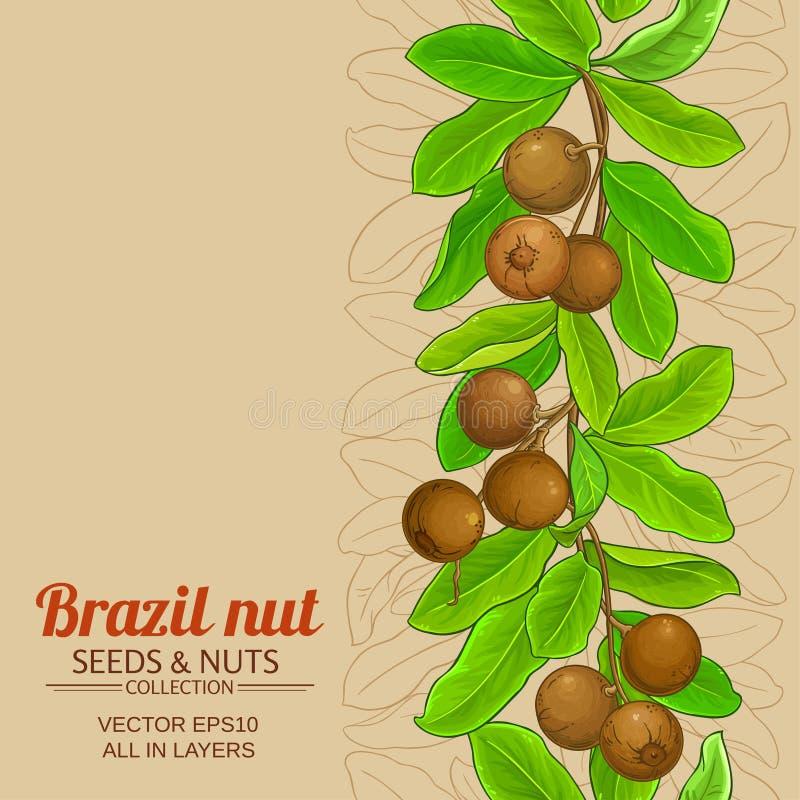 Το καρύδι της Βραζιλίας διακλαδίζεται υπόβαθρο απεικόνιση αποθεμάτων