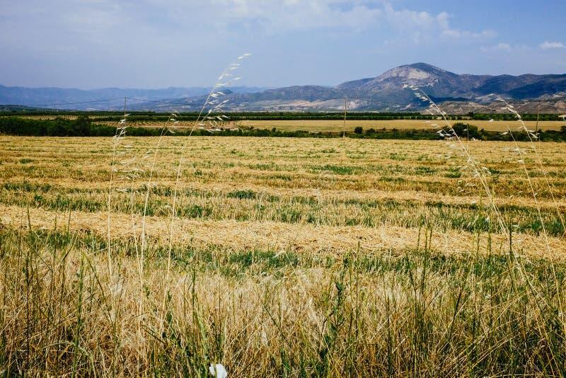 Το καταλανικό τοπικό LAN στοκ φωτογραφία