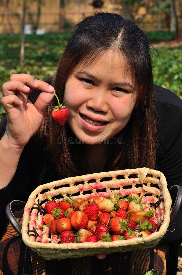 Το καλάθι των φραουλών στο χέρι στοκ φωτογραφία με δικαίωμα ελεύθερης χρήσης