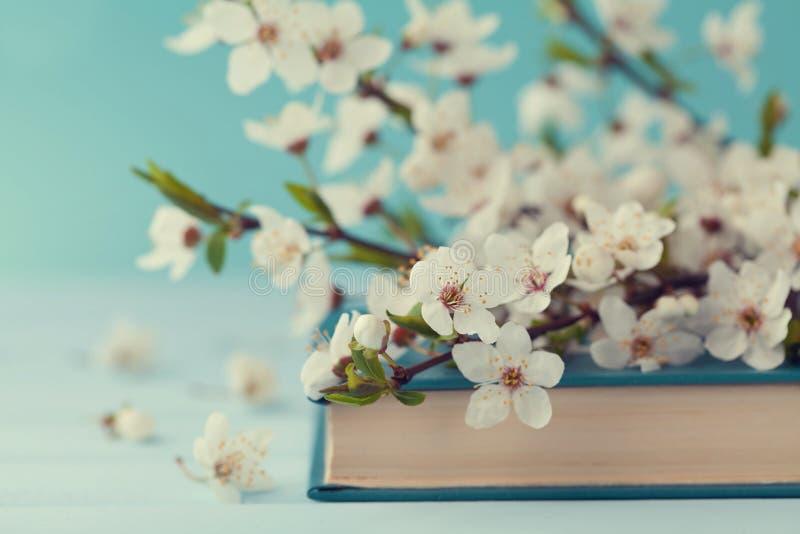 Το κεράσι ανθίζει και παλαιό βιβλίο στο τυρκουάζ υπόβαθρο, όμορφο λουλούδι άνοιξη, εκλεκτής ποιότητας κάρτα στοκ φωτογραφίες