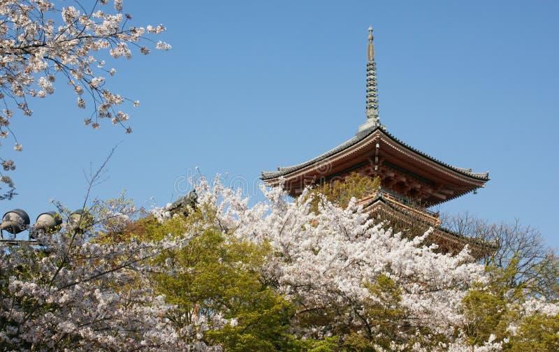 το κεράσι ανθίζει τον ιαπωνικό πύργο στοκ φωτογραφία με δικαίωμα ελεύθερης χρήσης