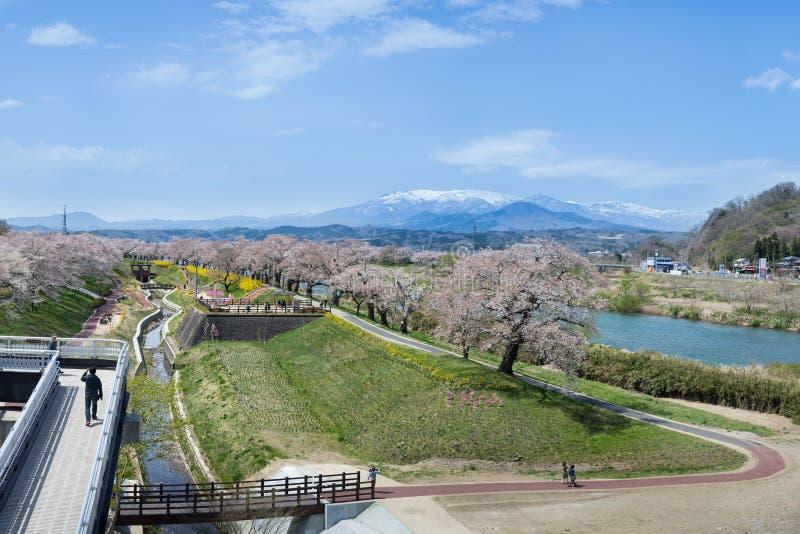 Το κεράσι Funaoka ανθίζει άποψη στο Σεντάι Ιαπωνία στοκ εικόνες