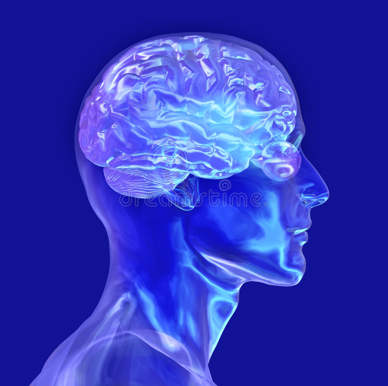 το κεφάλι γυαλιού ψαλιδίσματος εγκεφάλου περιλαμβάνει το αρσενικό μονοπάτι ελεύθερη απεικόνιση δικαιώματος