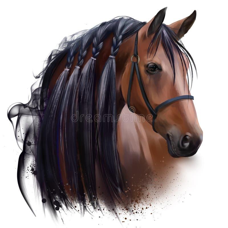 Το κεφάλι του αλόγου Σχέδιο Watercolor διανυσματική απεικόνιση