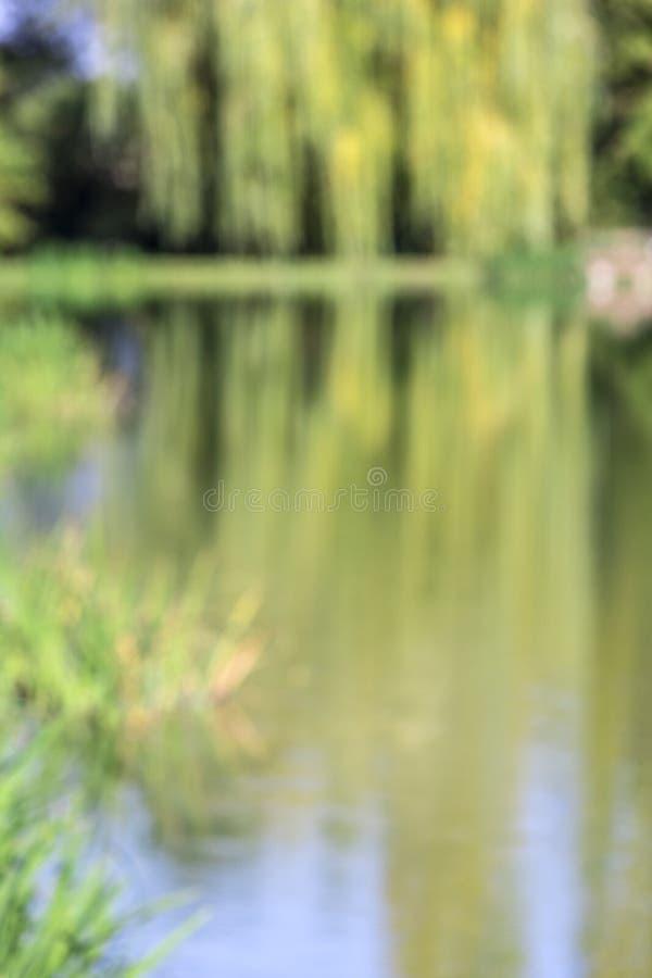 Το κλάμα των δέντρων ιτιών απεικόνισε σε έναν ποταμό, αντανάκλαση στο νερό το φθινόπωρο στοκ εικόνες