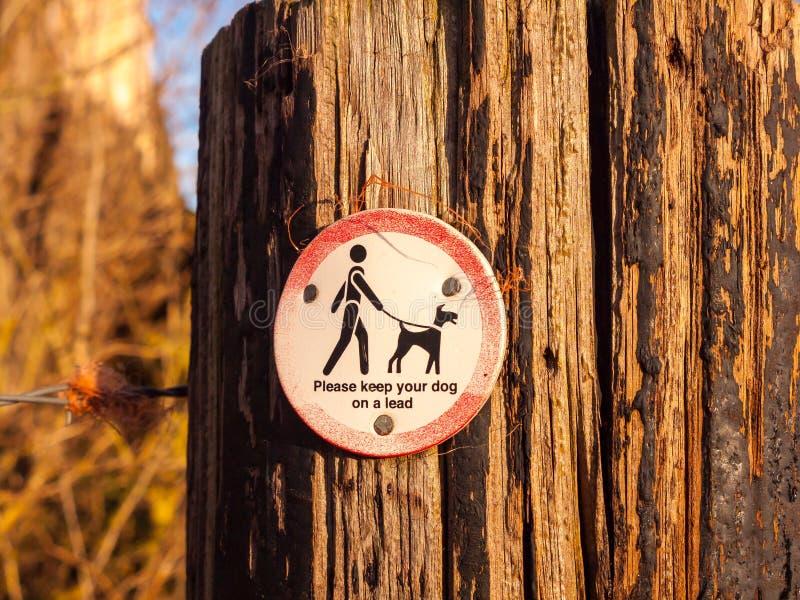 Το κοινό που περπατά το ξύλινο σημάδι σκυλιών σημαδιών μετα παρακαλώ κρατά το σκυλί σας επάνω στοκ φωτογραφία με δικαίωμα ελεύθερης χρήσης