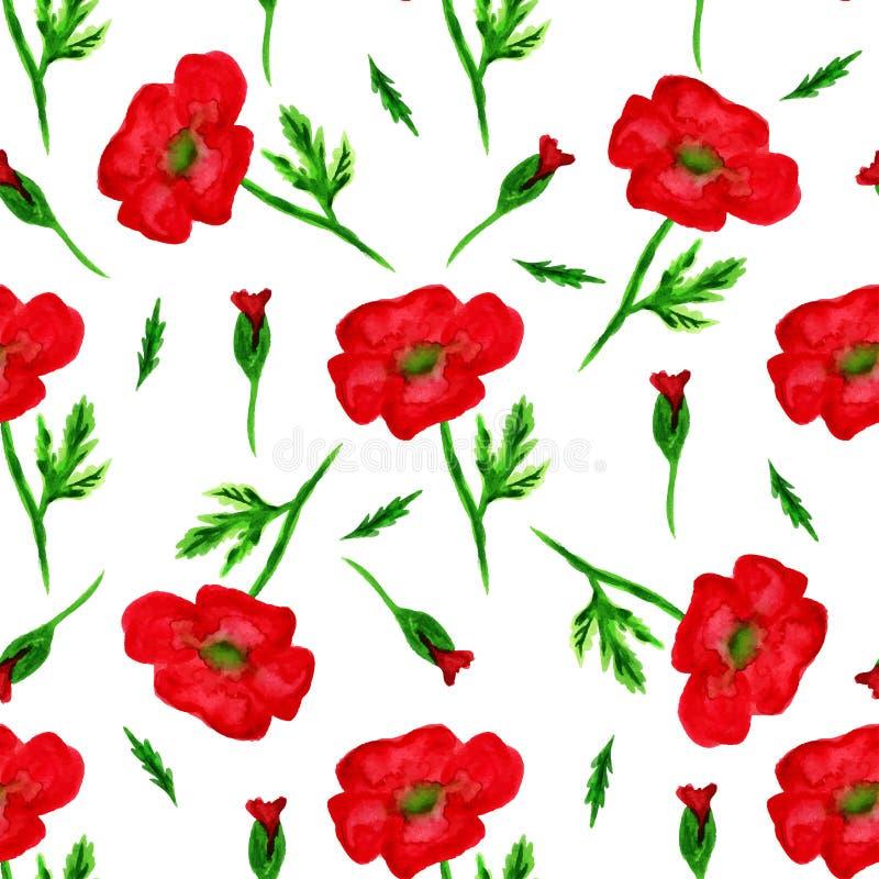 Το κομψό άνευ ραφής σχέδιο με το watercolor χρωμάτισε τα κόκκινα λουλούδια παπαρουνών, στοιχεία σχεδίου Το Floral σχέδιο για τις  ελεύθερη απεικόνιση δικαιώματος
