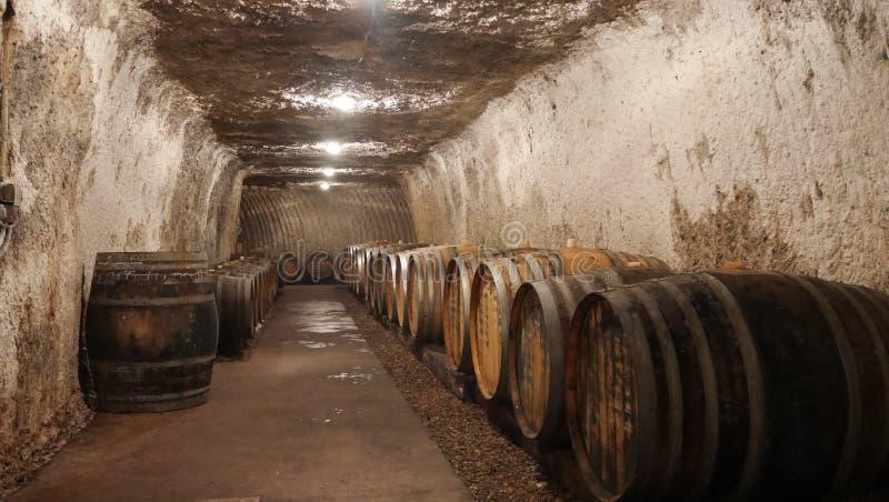 το κονιάκ κελαριών πλαισιώνει το δρύινο εκεί κρασί στοκ εικόνα