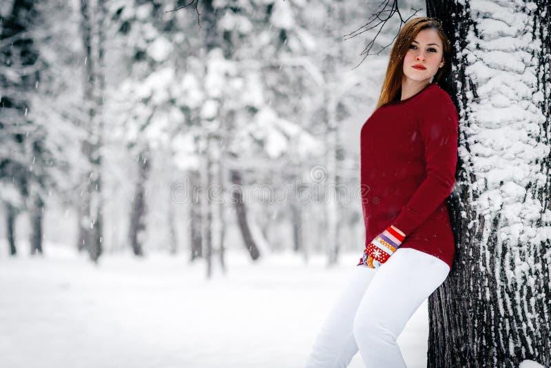 Το κορίτσι έντυσε σε ένα καφέ πουλόβερ και τα άσπρα εσώρουχα έκλιναν ενάντια στον κορμό δέντρων ενάντια σε ένα σκηνικό του χιονισ στοκ εικόνα