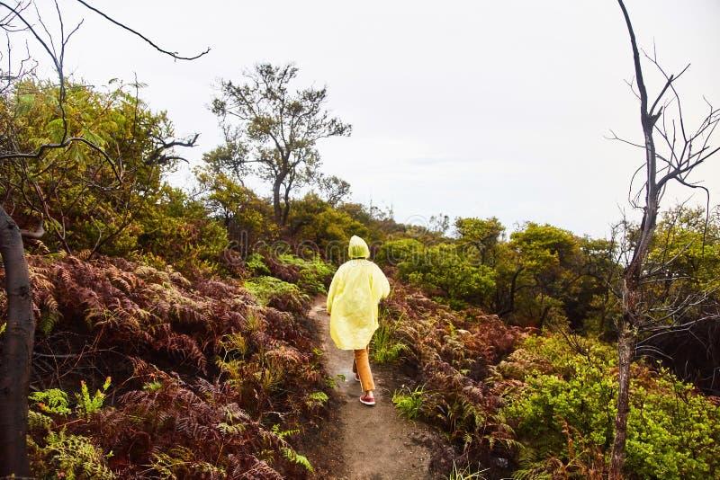 Το κορίτσι αναρριχείται στην πορεία στην κορυφή του ηφαιστείου στοκ εικόνες με δικαίωμα ελεύθερης χρήσης