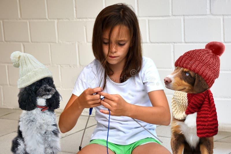 Το κορίτσι εφήβων πλέκει για τα σκυλιά της στοκ εικόνες