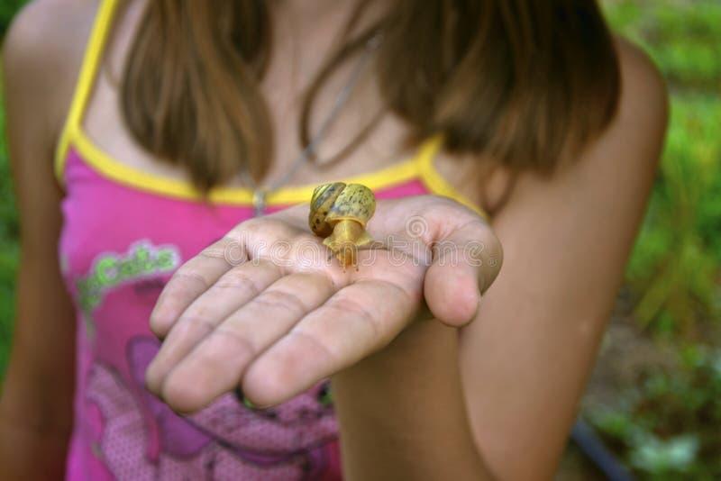 Το κορίτσι κοιτάζει και κρατά ένα σαλιγκάρι στοκ εικόνα