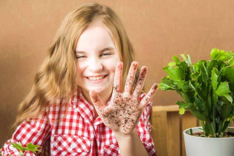 Το κορίτσι κρατά το έδαφος Το κορίτσι θα μεταμοσχεύσει τις σε δοχείο εγκαταστάσεις στο σπίτι Γη, σπορόφυτο, άνοιξη, χέρια, η έννο στοκ εικόνα