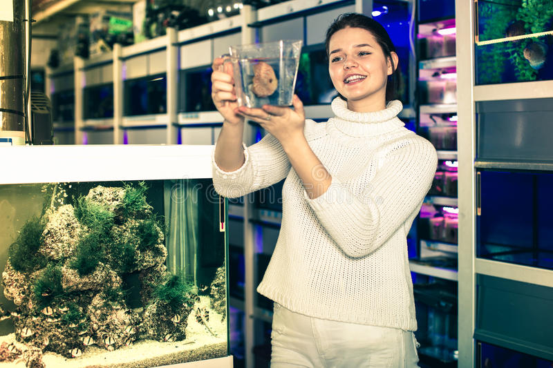 Το κορίτσι κρατά τα μεγάλα τροπικά ψάρια στο πλαστικό εμπορευματοκιβώτιο στοκ εικόνες