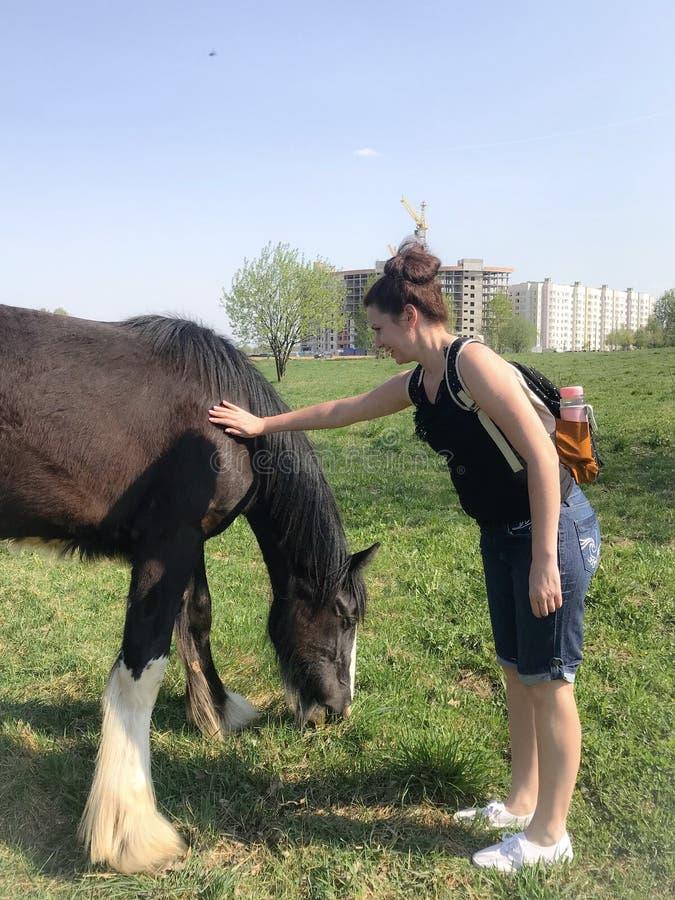 Το κορίτσι κτυπά ένα άλογο Πίσω από το σακίδιο πλάτης, ακουστικά στα αυτιά στοκ εικόνες με δικαίωμα ελεύθερης χρήσης