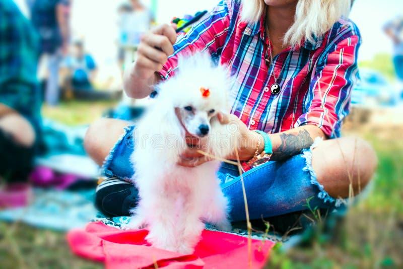 Το κορίτσι με μια δερματοστιξία και ένα σκυλί στοκ εικόνες