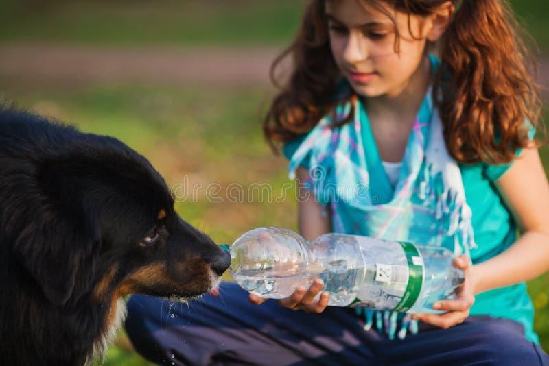το κορίτσι ποτών σκυλιών δίνει στις νεολαίες στοκ εικόνα με δικαίωμα ελεύθερης χρήσης
