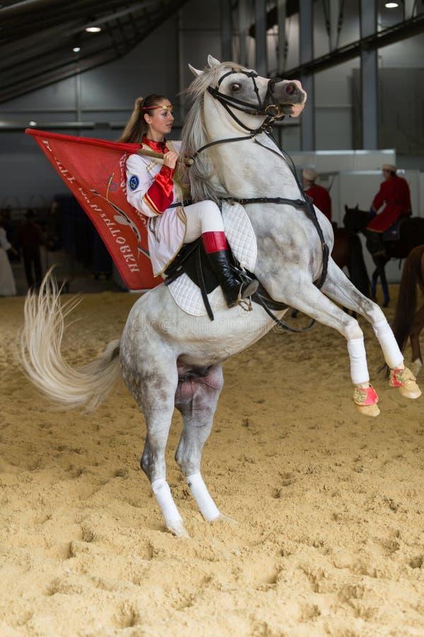Το κορίτσι στο άλογο που εκτρέφεται παρουσιάζει στοκ εικόνες