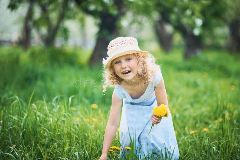 Το κορίτσι συλλέγει την ανθοδέσμη πικραλίδων για ένα στεφάνι στο λιβάδι του orhard στοκ φωτογραφία με δικαίωμα ελεύθερης χρήσης