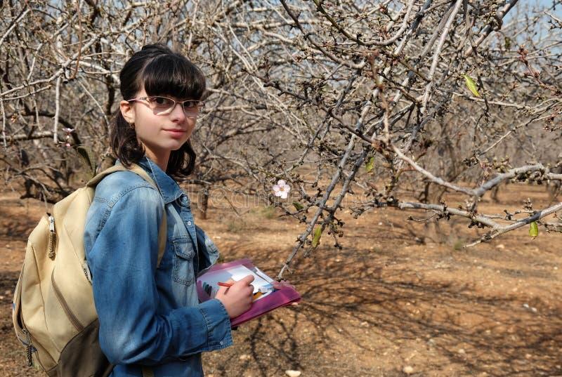 Το κορίτσι σύρει το λουλούδι αμυγδάλων στοκ εικόνες