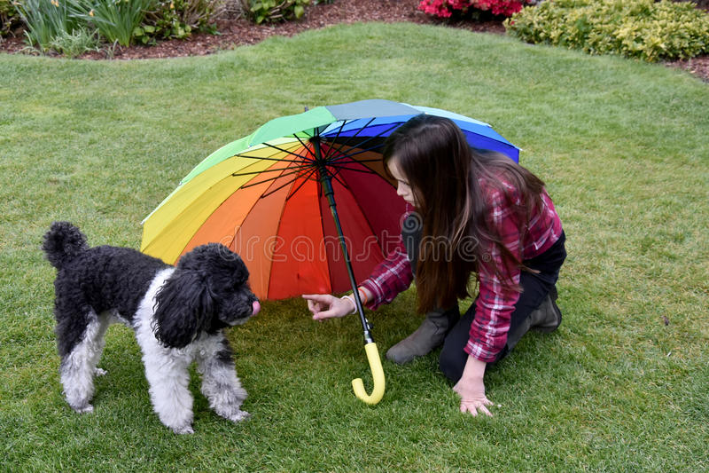Το κορίτσι την προστατεύει λίγο σκυλί στοκ εικόνα με δικαίωμα ελεύθερης χρήσης