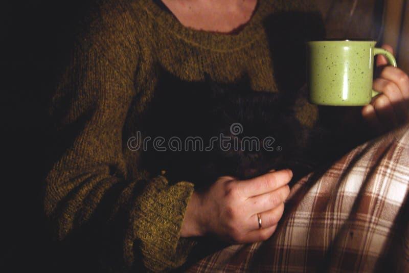 το κορίτσι φλυτζανιών δίν&epsil Σε ετοιμότητα μιας μαύρης γάτας στοκ φωτογραφία