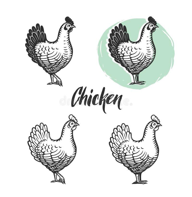 Το κοτόπουλο logotypes έθεσε Κοτών στοιχεία κρέατος και εκλεκτής ποιότητας προϊόντων αυγών απεικόνιση αποθεμάτων