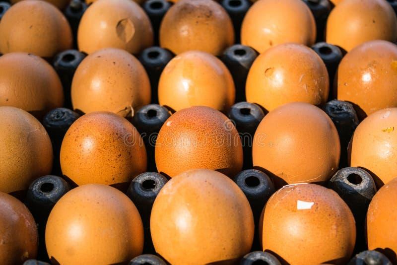 Το κοχύλι αυγών είναι ραγισμένο σε μαύρα τρόφιμα δίσκων στοκ φωτογραφίες με δικαίωμα ελεύθερης χρήσης