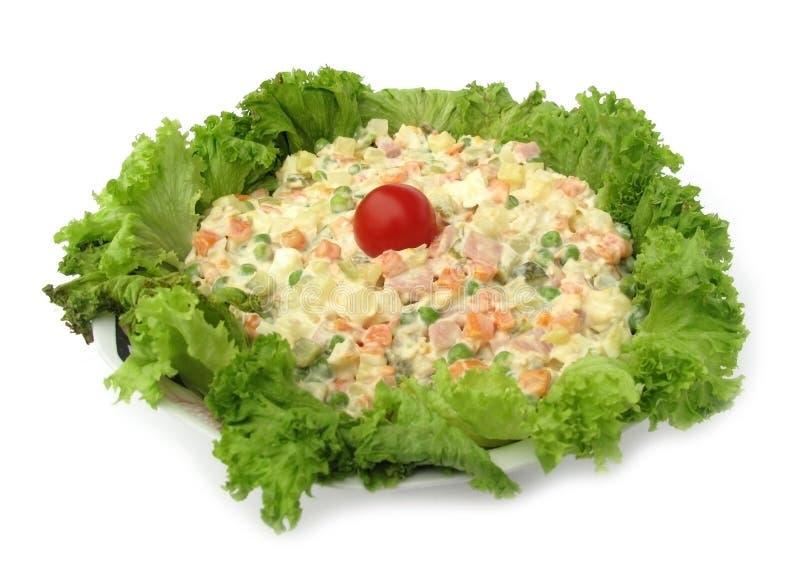 Το κρύο πιάτο ανάμιξε τη σαλάτα που διακοσμήθηκε με το τριζάτο lettuc στοκ φωτογραφία με δικαίωμα ελεύθερης χρήσης