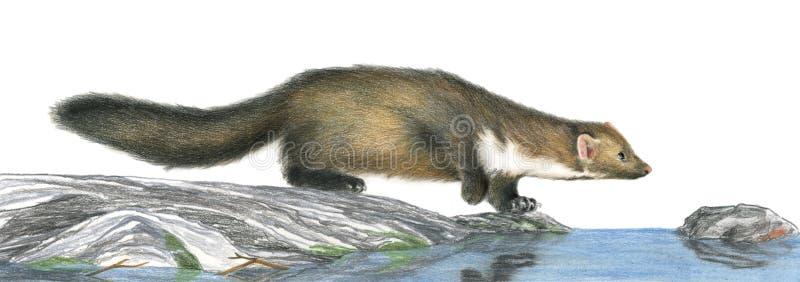 Download το κυνήγι έργου τέχνης η πέτ&rh Απεικόνιση αποθεμάτων - εικονογραφία από arroyos, wildlife: 1529289