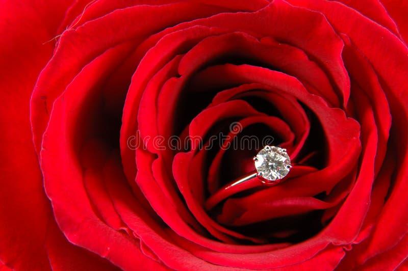 το κόκκινο δαχτυλίδι δέσμευσης αυξήθηκε στοκ φωτογραφία με δικαίωμα ελεύθερης χρήσης
