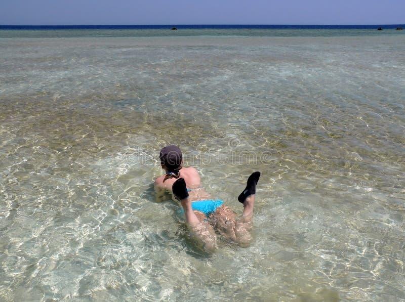 το κόκκινο της Αιγύπτου χαλαρώνει τη θάλασσα ρηχή στοκ εικόνες